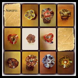 PicMonkey Collage anillos de cuero